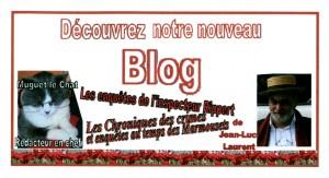 bouton-blog-300x163